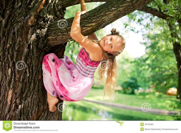 little-blonde-girl-park-hanging-tree-34135461